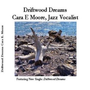 1375595098_Driftwood_Dreams_Front_Cover